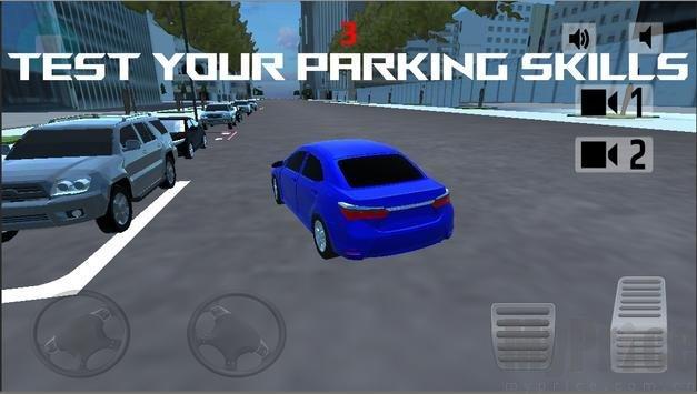 极限花冠停车模拟
